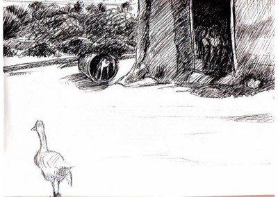 20  One-winged dangerous goose, gaot kid in barrel, women sort grain Moroccan farm '01