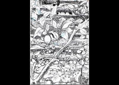 DEIA mallorca blacksheep terraces drawn ink  01